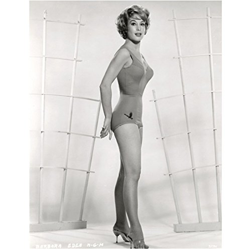 Barbara Eden 8 inch by 10 inch PHOTOGRAPH I Dream of Jeannie 7 Faces of Dr. Lao Harper Valley P.T.A. B&W One Piece Swimsuit Bird Above Right Leg kn