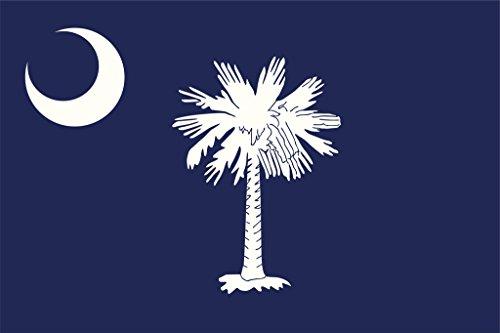 Flag of South Carolina Art Print Poster 18x12 inch