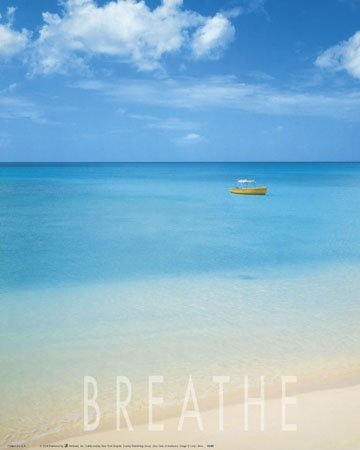 Breathe Tropical Ocean Beach Scenic Poster Print 20 X 16 Inches