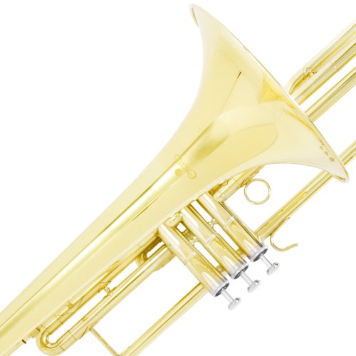 Cecilio 4Series TB-480 Bb Valve Trombone with Monel Valves by Cecilio (Image #4)
