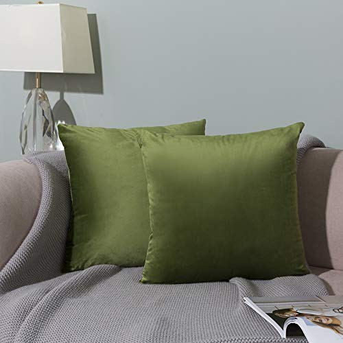 WLNUI Set of 2 Soft Velvet Solid Sage Green Decorative Square Throw Pillow Covers Set Cushion Case for Sofa Couch Home Decor 20x20 Inch 50x50 cm (Sage Green Decorative Pillows)