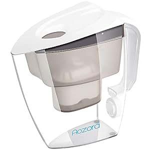 Amazon.com: Tetera de vidrio – Tetera infusor de té, acero ...