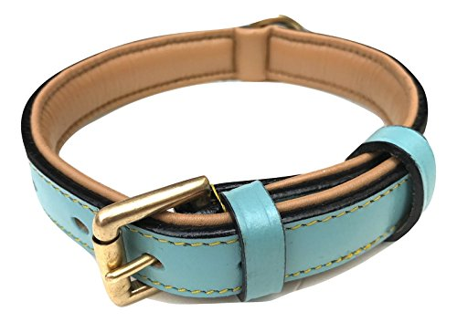 Soft Touch Collars Leather Dog Collar Padded, Turquoise with Beige Padding, Medium Size