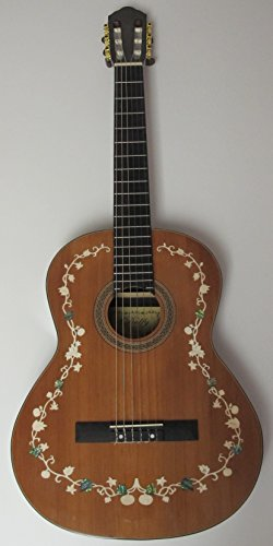 Delfy Df020-008 Solid Cedar Top Solid Rosewood Back and Sides Classical Guitar (Solid Top Cedar)