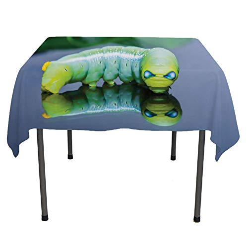 Flyerer Caterpillar Dinning Tabletop Decoration Green Tone Chub Little Worm Hypnotic Eyes Closeup Photographic Image Multicolor Reusable Tablecloth Rectangle Tablecloth 60 by 102 inch