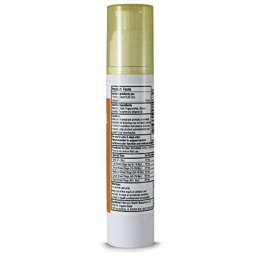 Dr Mercola Ubiquinol for Pets Liquid Pump - 196 Fl Oz 58 mL - Enhanced Bioactivity CoQ10 - Dietary Supplement For Cats amp Dogs - In An Airless Pump To Ensure Freshness Discount