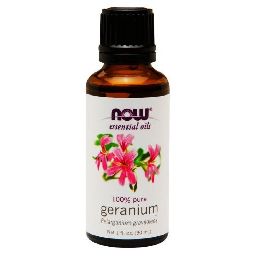 Now 100 Pure Geranium Oil For Sale