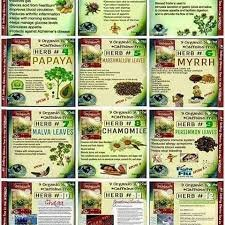 Best deal  Authentic,In stock,4 packsTeDivina One month supply,coming back of the''ORIGINAL''detox tea, way more effective than iaso tea by Te Divina (Image #5)