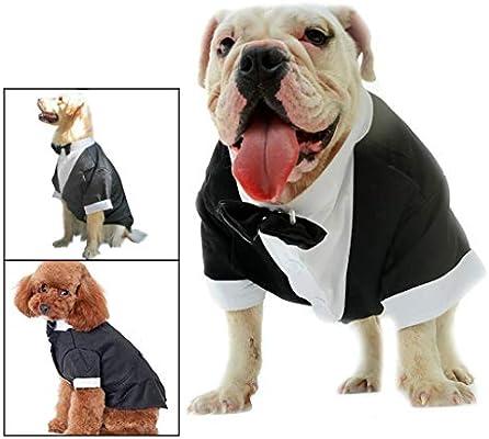 Walaha - Ropa para Mascotas para Perro, Gato, Cachorro, Traje ...