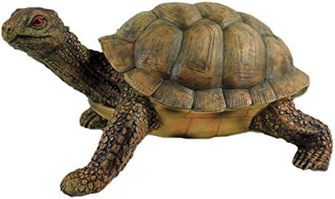 Diseño de la tortuga de Herman para uso en interiores y al aire libre: Amazon.es: Hogar