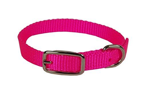 Hamilton Single Thick Nylon Deluxe Dog Collar, 10-Inch, Hot Pink