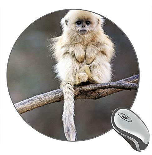 Animals Wild Snub-Nosed Monkey Mousepad Mat Round Mouse pad