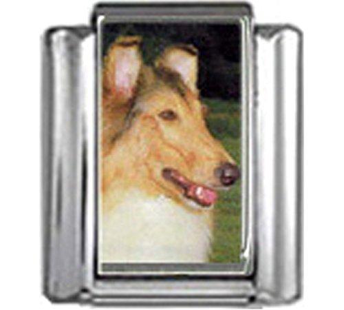 Stylysh Charms Collie Dog Photo Italian 9mm Link DG164