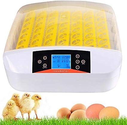 Incubadora Automática de 56 Huevos con Iluminación LED Pantalla Digital y Control Eficiente e Inteligente de Temperatura y Humedad Fácil Manipulación Rotación Automática