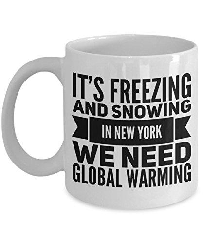 Anti Global Warming Mug Funny Hoax We Need Freezing Snowing Fun Coffee Tea Cup New York