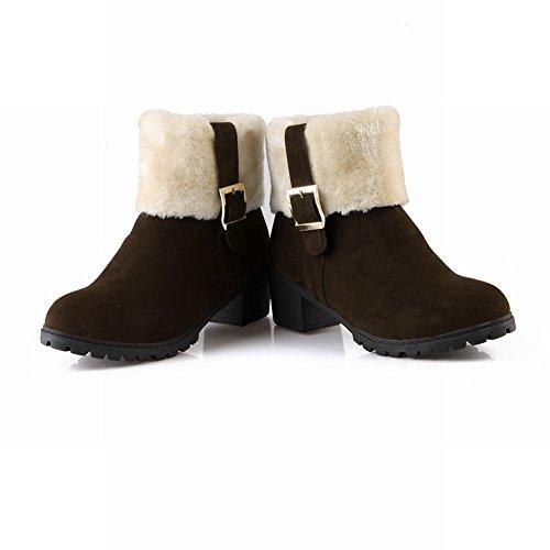 Charme Voet Dames Mode Nubuck Gespen Riem Ruige Mid-heel Korte Winter Snowboots Met Rits Bruin