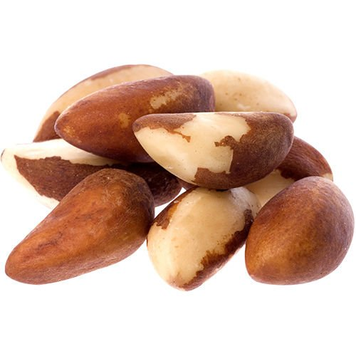 Food to Live Organic Brazil Nuts (Raw, No Shell, Kosher) (44 Pounds) by Food to Live