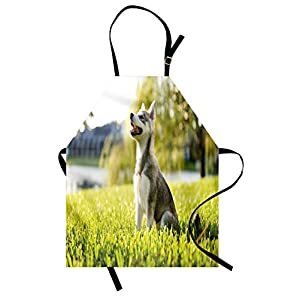 Ambesonne Alaskan Malamute Apron, Klee Kai Puppy Sitting on Grass Looking up Friendly Young Animal, Unisex Kitchen Bib Apron with Adjustable Neck for Cooking Baking Gardening, Multicolor 5