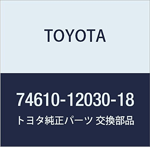Toyota 74610-12030-18 Assist Grip