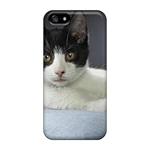 Fashionable UfOXqPx8141UXqJM Iphone 5/5s Case Cover For Chester Domestic Shorthair Protective Case