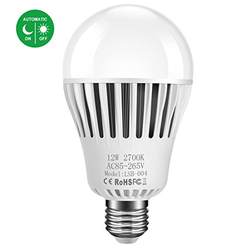 Outdoor Lamp Post Light Bulbs - 9