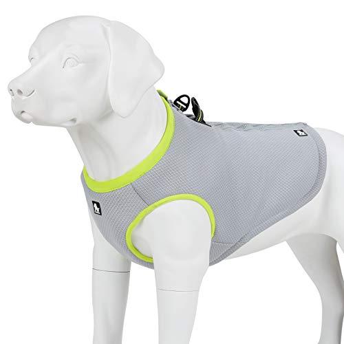 juxzh Truelove Dog Cooling