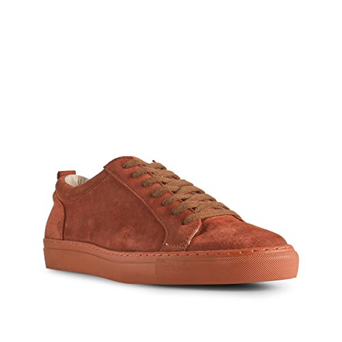 Cole Bear 198 ruggine Sneakers Orange Scarpa The uomo da S RTEAHqvw