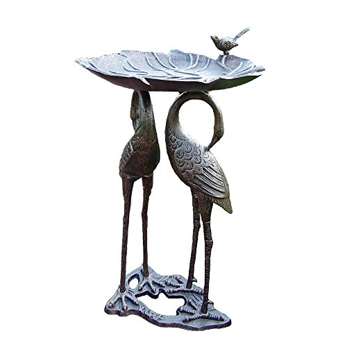 Oakland Living 5608-AB Easy to Assemble Stainless Steel and Brass Hardware Crane Lily Birdbath Review