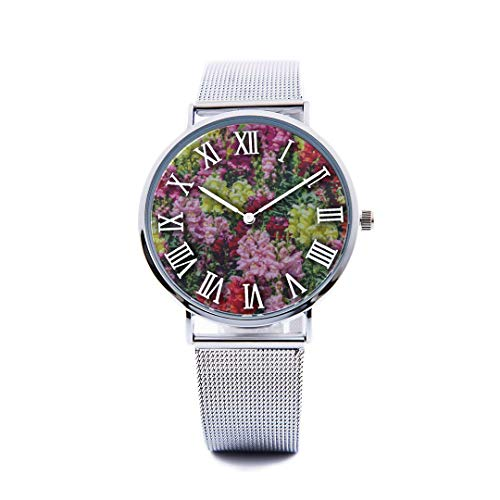 Unisex Fashion Watch Snapdragon Red Vintage Flower Print Dial Quartz Stainless Steel Wrist Watch with Steel Strap Watchband for Men Women 40mm Casual Watch