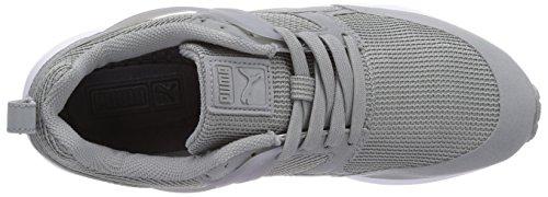 Puma Arial - zapatilla deportiva de material sintético unisex gris - Grau (limestone gray-dark shadow 01)
