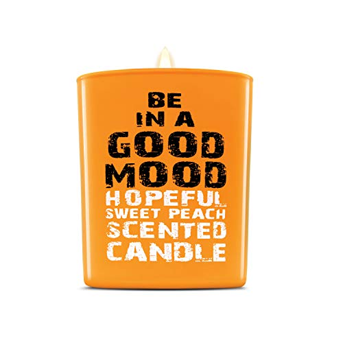 Be in a Good Mood Aromatherapy Candles   Premium Scented Candles   Each Candle Set is Crafted with Perfection - Candle Jars, Hand Poured with Non-Toxic Mineral Wax & Cotton Wick (Sweet Peach)