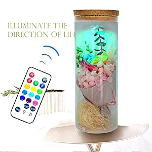 N2 Flower Preserved 100% Real Flower Never Withered Rose with Remote Control Preserved Rosed Decorations Crafts Gifts for Wedding Christmas Valentine Birthday Mother's Day 90