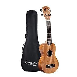 Strong Wind Soprano Ukulele for Beginners,Mahogany 21 Inch Hawaiian Starter Uke Kids Guitar Ukalalee With Gig Bag
