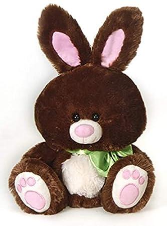 Chocolate Brown Bunny 10