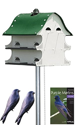 American Complete Purple Martin Package product image