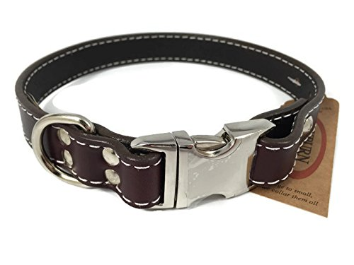 Auburn Leathercrafters Seneca Side Release Buckle Collar, Burgundy, 24 inches (22 inches to 24 inches)