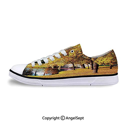 (Low Top Canvas Shoes in City Park Saint Petersburg Lace Up Sneakers)