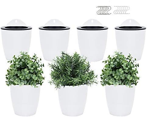Amazon Com Pomeat Self Watering Hanging Planters 7 Pack Lazy Flower Pot Wall Plant Holder For Succulents Plants Flowers Indoor Outdoor With 7 Hooks White Health Personal Care