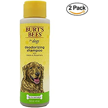 Burt S Bees Hot Spot Spray For Dogs Review