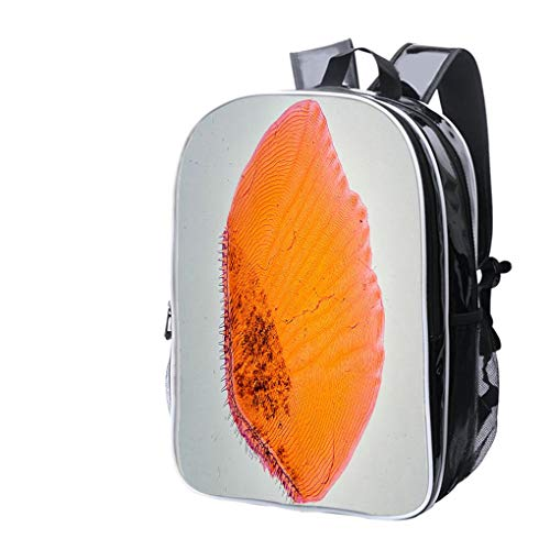 (High-end Custom Laptop Backpack-Leisure Travel Backpack Fish Scale Under Microscope Water Resistant-Anti Theft - Durable -Ultralight- Classic-School-Black)