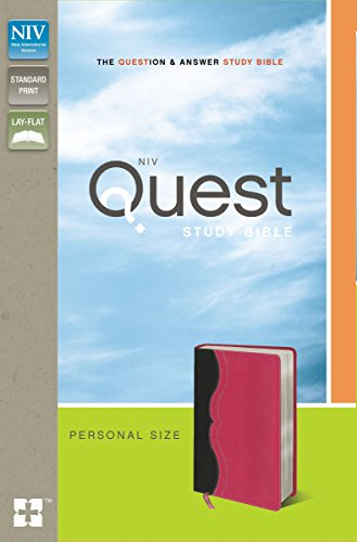the quest bible study - 8