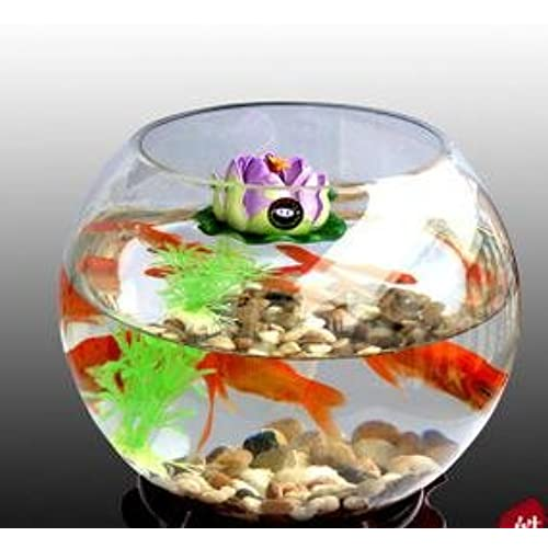 SACHI ガラス製金魚鉢