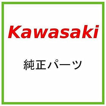 KAWASAKI (カワサキ) 純正部品 ハウジングアッシ(コントロール),LH 46091-1661