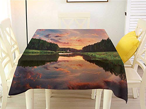 Panorama Bleach Wood Woodland - L'sWOW Square Tablecloth Stain Resistant Americana Forest Park in Ukraine Scenic Panorama with Water Reflection Picture Print Green Blue Coral Clamps 50 x 50 Inch