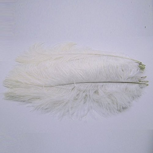 KOLIGHT 100pcs Ostrich Feather White 12''-14'' Natural Feathers Wedding, Party,Home,Hairs Decoration by KOLIGHT (Image #5)