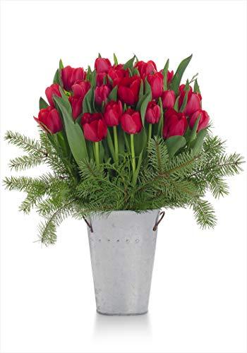 Stargazer Barn Stargazer Barn - Jingle Bell Bouquet - 2 Dozen Red Tulips With Holiday Greens - Vase Included, - Tulip Bell Flower