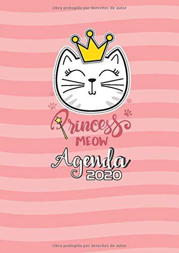 Agenda 2020 Princess meow: Tema Gatos Agenda Mensual y ...