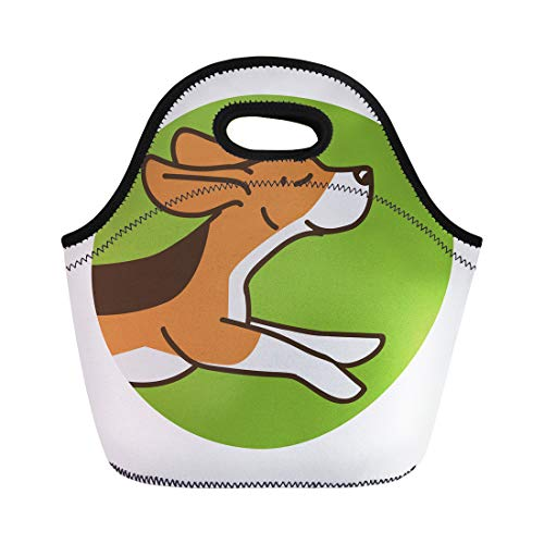 Semtomn Neoprene Lunch Tote Bag Brown Animal Beagle Breed Cute Dog Flat Funny Happy Reusable Cooler Bags Insulated Thermal Picnic Handbag for Travel,School,Outdoors,Work