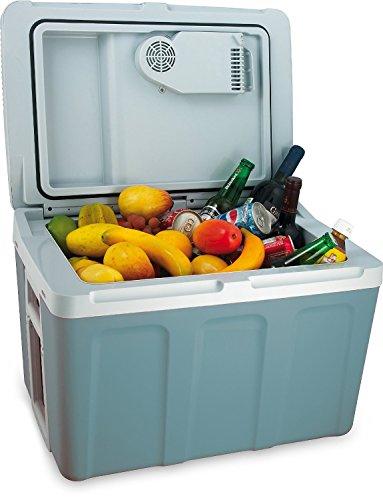 45 Liter Kühlbox / Mini Kühlschrank 12v 230V (Kombi Kühltasche geeignet für AUTO und Steckdose, zusätzliche Warmhaltefunktion)