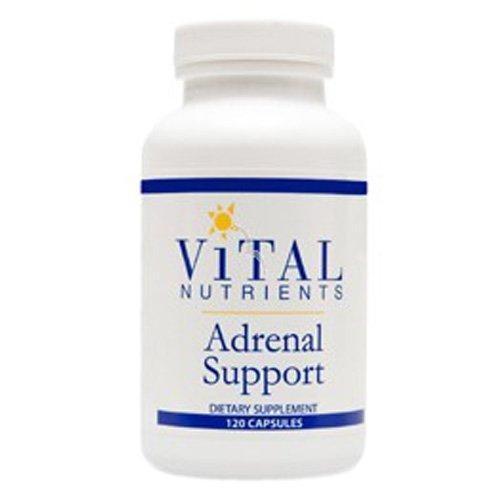 Vital Nutrients - surrénale 120c Support [Santé et beauté]